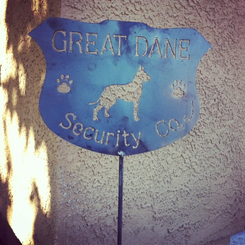 security great dane